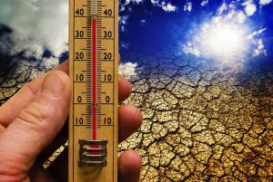 Vergebt mir: Klimawandel